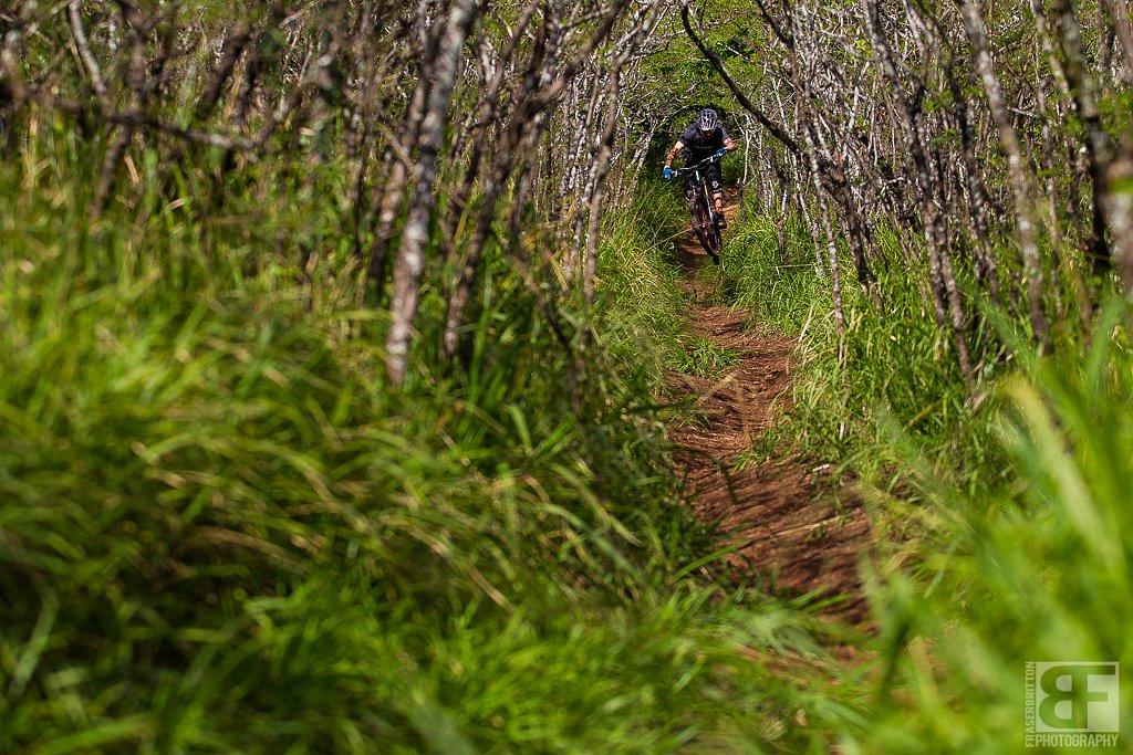 Hawaii-Morpheusbikes-0467.jpg